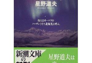 hoshino-northern