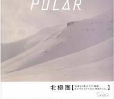 ishikawa-polar