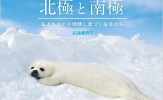 tanabe-arctic
