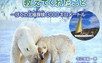 terasawa-arcticbear
