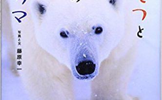 fujiwara-polarbear
